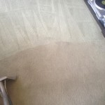 Carpet-Cleaning-Kent