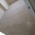 Kent-Carpet-Clean-room