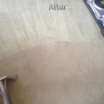 Kent-Carpet-Cleaning-Company