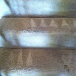 Kent-Stairs-Carpet-Cleaning