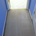 Kent-Vomit-2-after-carpet
